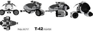 T-42 Fighter Views