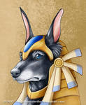 Anubis by IllegalHamsterThe