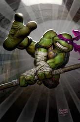ninja turtle cover  idw
