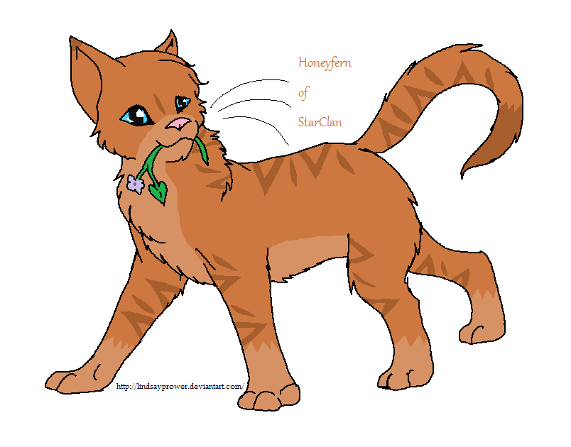 Warrior Cats Blossomkit What if Honeyfern lived