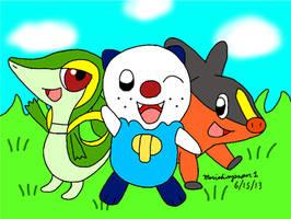 Pokemon Gen 5 Starters by MarioSimpson1