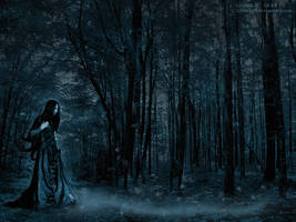 Elfs Forest by Lilithhc