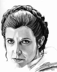 Hoth Leia by khinson