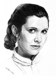 30th Anniversary Bespin Leia by khinson