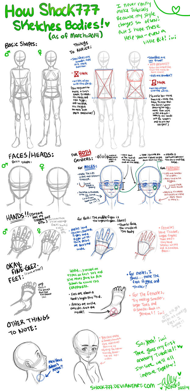 Body Tutorial Thing by shock777