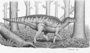 Kritosaurus australis
