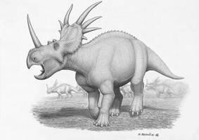 Styracosaurus albertensis by BrokenMachine86