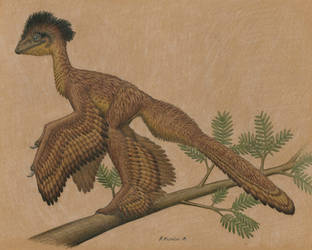 Anchiornis huxleyi by BrokenMachine86