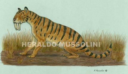 Thylacosmilus atrox by BrokenMachine86