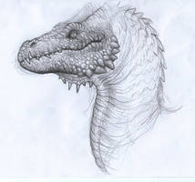 dragon sketch by BrokenMachine86