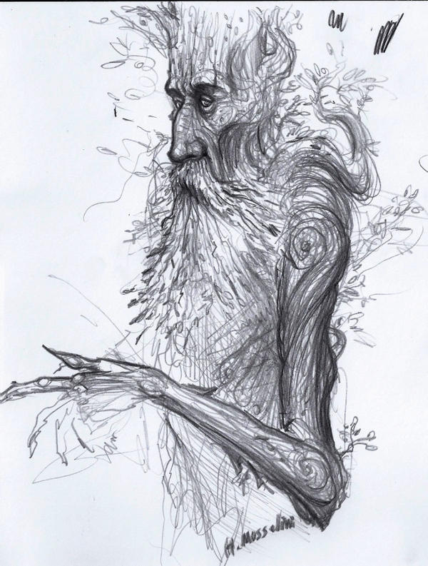 Ent Sketch By Brokenmachine86 On Deviantart