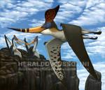 Pteranodon sternbergi (Geosternbergia)