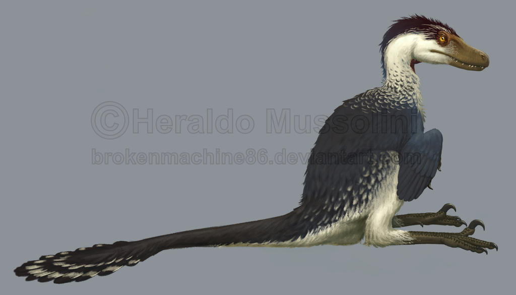 Acheroraptor by BrokenMachine86
