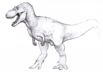 Daspletosaurus sketch by BrokenMachine86