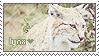 lynx by Folkwe