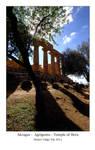 Akragas - Agrigento Sicilia 2