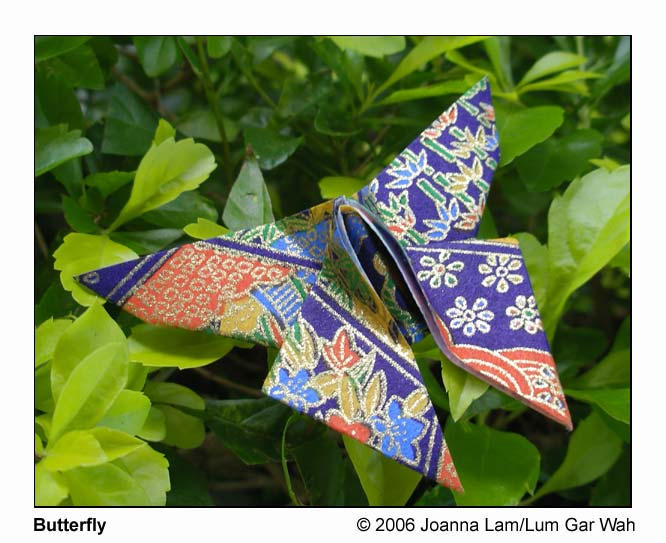 Butterfly by cloudrat