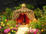 Harem Tent 2