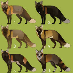 (CLOSED) Cross Foxes [now for points]