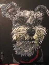 Elvis Durant dog