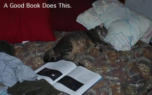 A good book does this... by DocMallard
