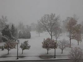 Casper Snow 1 by DocMallard