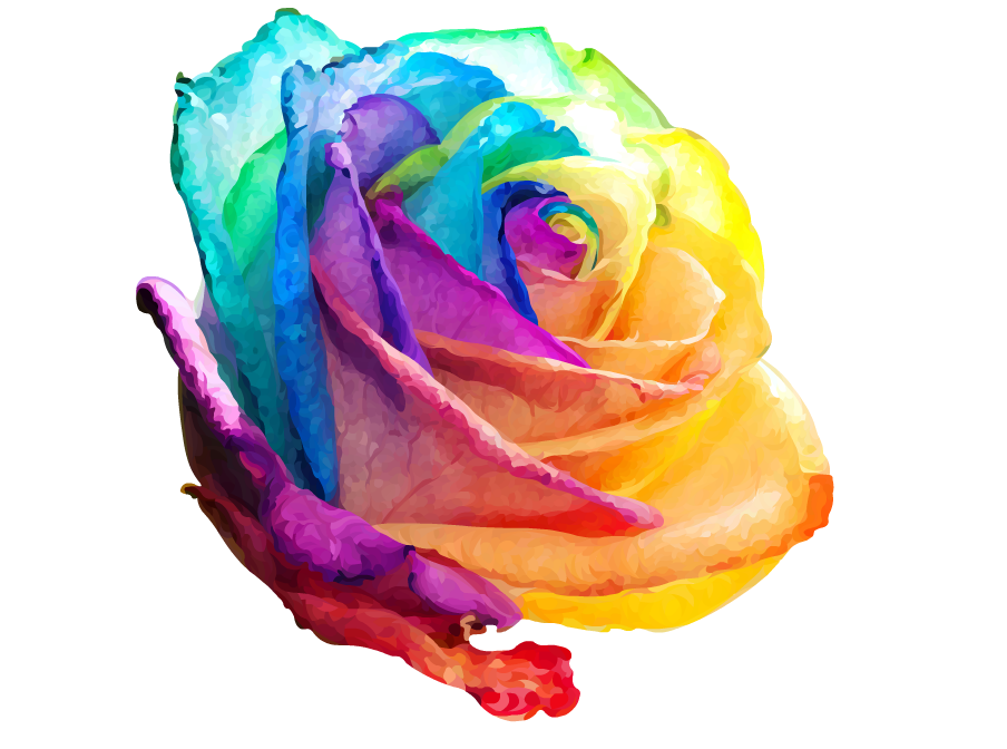 Rainbow rose by sherbetrainbow on deviantart for Where to get rainbow roses