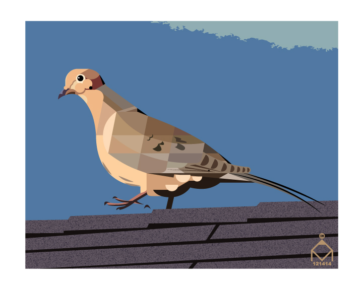 Mourning Dove by ValliantEffort