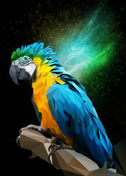 Parrot Low Poly