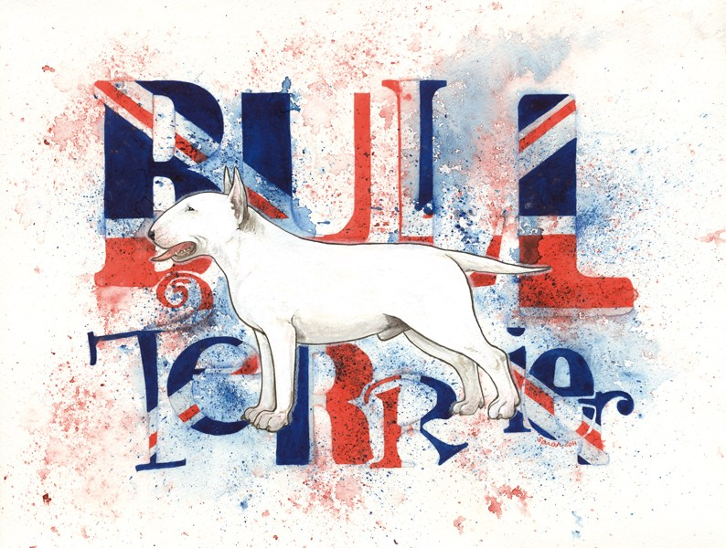 White Bull Terrier by saraquarelle