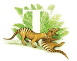 Lost Thylacine by saraquarelle