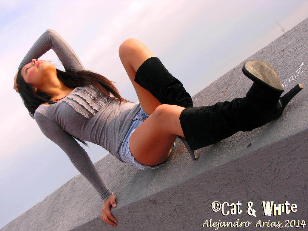 Top of the world 01 by Cat-n-White
