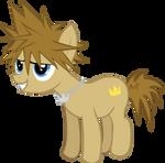 Kingdom Hearts Sora Pony