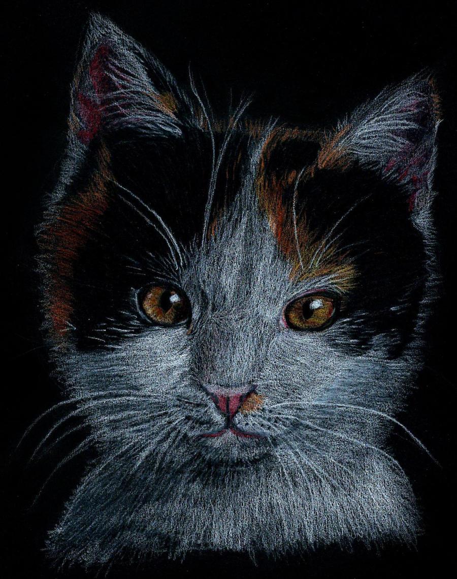 Kitty-cat by Tsukiko-chan09