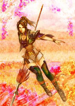 Fan Chara of Dynasty Warriors
