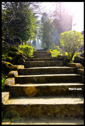 Steps by philvdotcom