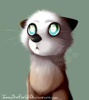 Fur Test by IvoryTheFox