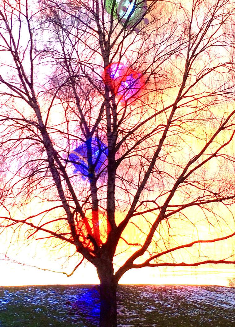 Colors by mixxon