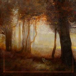 Grey Fox 1 by KevinNichols