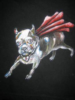 Pearl the Super-dog!