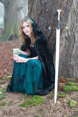 Lady with sword by LughoftheLongArm