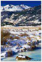The Winter Blues by kkart