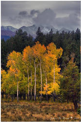A Stormy Autumn by kkart