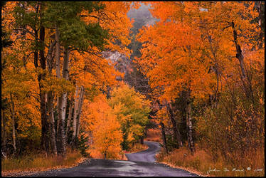 Autumn Travels by kkart