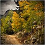 The Trail To Autumn