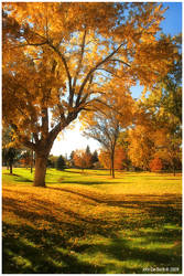 A Late Autumn Afternoon by kkart
