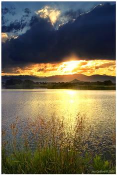 A Summer Sunset At The Lake