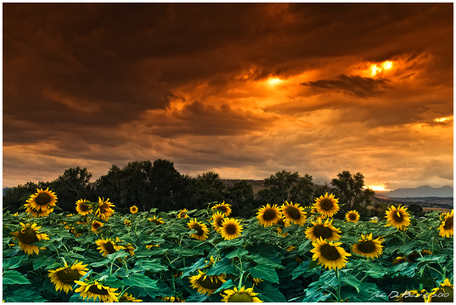 Skies Of Fire by kkart