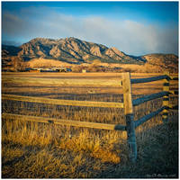 Fences Of Life by kkart
