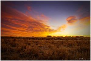 Sunrise Of The Plains by kkart